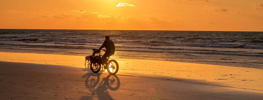 Konsten att cykla – och vad du behöver